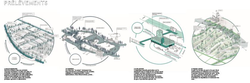 EDF Bas carbone