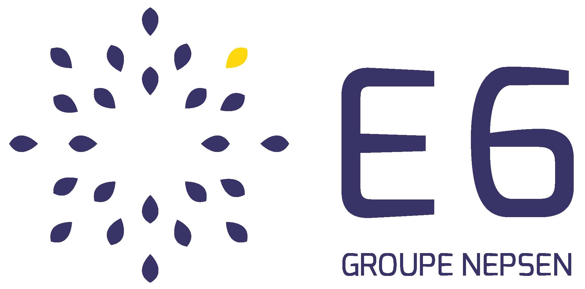 E6 Consulting
